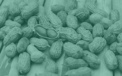 Ist Erdnussbutter gesund?