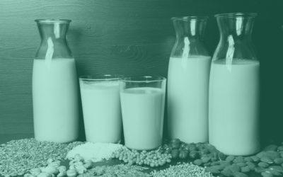 Pflanzenmilch selber machen (12 Sorten)
